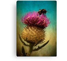Bee Landing 2 Canvas Print