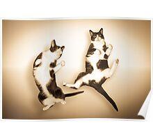 Feline It! - Sepia Version Poster