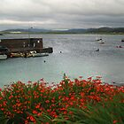 Portnoo with Montbretia by WatscapePhoto