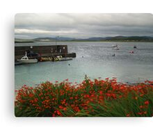 Portnoo with Montbretia Canvas Print