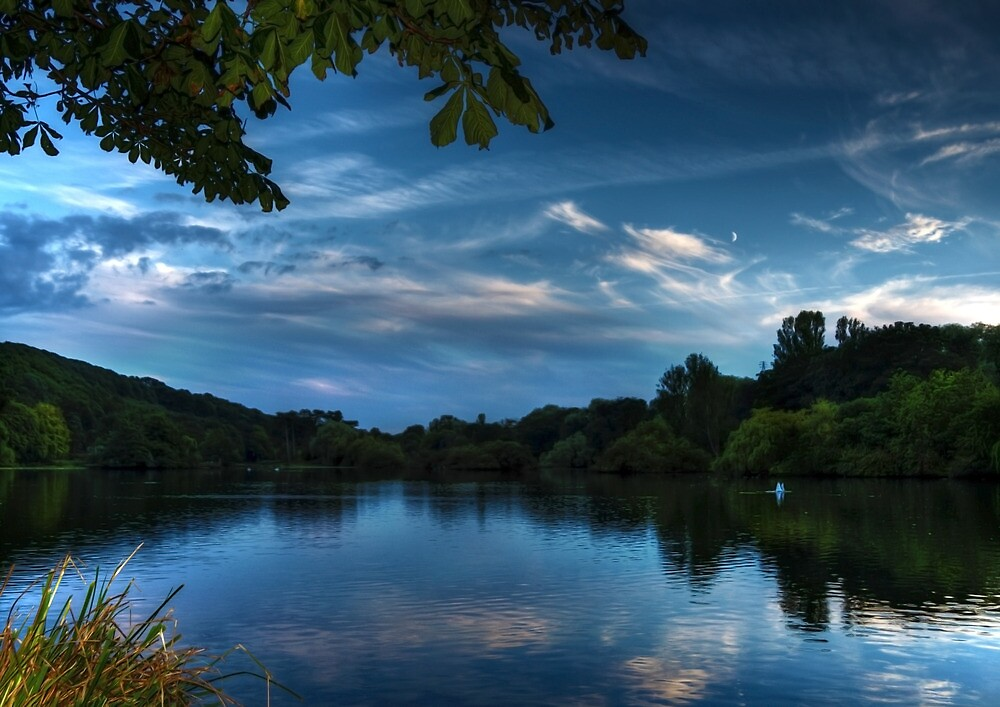 Blue Dawn by Svetlana Sewell