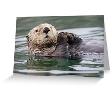 The Innoncent Face of a Sea Otter Greeting Card