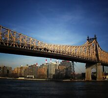 Ed Koch Queensboro Bridge - New York City by Vivienne Gucwa
