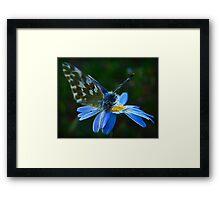 Elementary Fractal Angel Framed Print