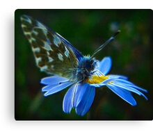 Elementary Fractal Angel Canvas Print