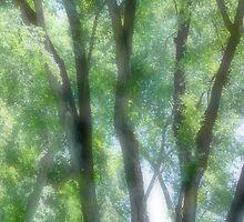 2011-05-15_Monique_Sevenans_Photography_008 by MSevenansPhoto