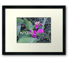 Beauty Amongst The Weeds 1 Framed Print