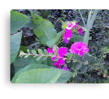 Beauty Amongst The Weeds 1 Canvas Print