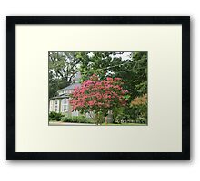 Signs of Fall 2 Framed Print