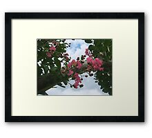 Signs of Fall 5 Framed Print