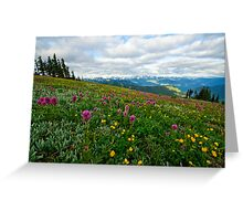 Olympic Mountains Wildflowers Greeting Card