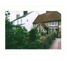 Typical English Garden Art Print