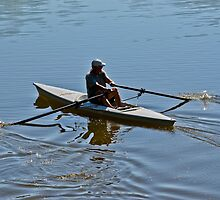 Early Morning Rower by Stephen  Saysell