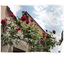 Roses in medieval town - Rothenburg, Germany Poster