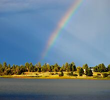 Fool Hollow Lake by George I. Davidson