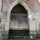 Ancient water door on canal - Venice, Italy by tracyannjones