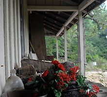 red flowers on a porch by ashley hutchinson