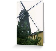 """Tilting At Windmills"" Greeting Card"