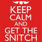 Harry Potter - Keep Calm and Get The Snitch by JordanDefty