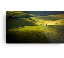 Greens and Golds Metal Print