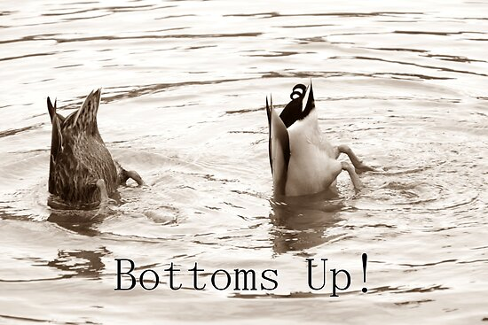 Bottoms up! 2 by Sue Ellen Thompson