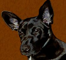I Hear Ya! Portrait of a Little Black Dog. by Patricia Barmatz