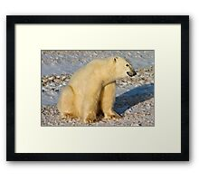 Would this face lie to you? Framed Print