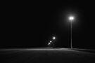 Lights  by Pene Stevens