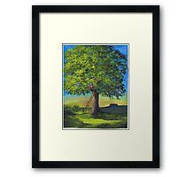 High in the linden tree Framed Print