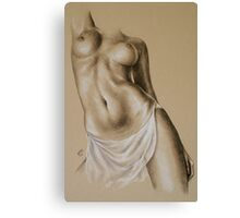 Sheer #3 Canvas Print