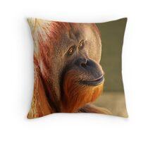 Male Sumatran Orangutan Throw Pillow