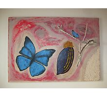 Butterfly with fruit branch and sand 1 Photographic Print