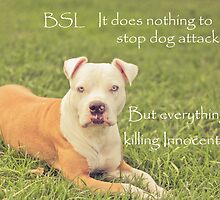 A Definition Of Breed Specific Legislation by Zdogs