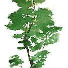 Little Zen Tree 344 by Sean Seal