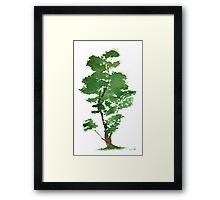 Little Zen Tree 344 Framed Print