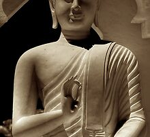 Vitkara Buddha by Bill Wetmore