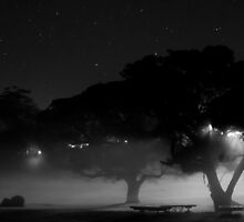 Backlit Night - Nowra by Scott Atherton