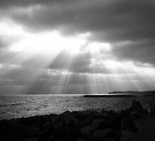 Shining Through by David Cooper