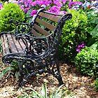 Private Garden Seat, Toowoomba, Australia by sandysartstudio