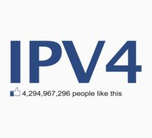IPV4 4,294,967,296 people like this by squidgun