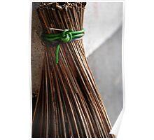 Malay broom Poster