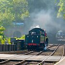 Grosmont Station by Trevor Kersley