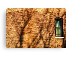 Rear Window Canvas Print