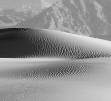 Mesquite Dunes by Ren-Photo