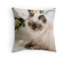 Kitty's Playtime Throw Pillow
