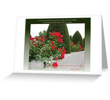 Red Roses for Love Greeting Card