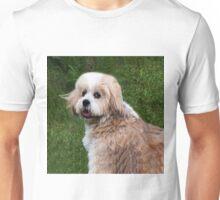 LHASA APSO-(I WISH I WAS A TEDDY BEAR)--PRECIOUS TEDDY BEAR CANINE APPAREL Unisex T-Shirt