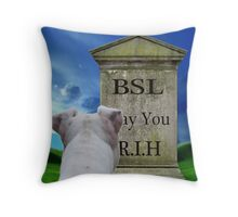 Bury BSL....May It Rest In Hell Throw Pillow
