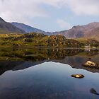 Morning Reflections by Ian Mitchell