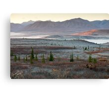 An Autumn Morning in Denali National Park Canvas Print